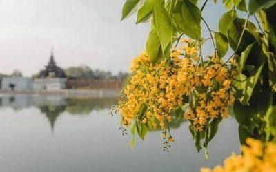 미얀마를 위한 기도5 – 하나님 이 땅을 새롭게 하소서! (2편)